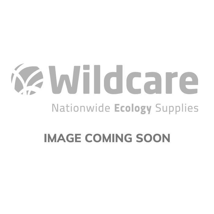 BugDorm-4 Insect Rearing Cage (24.5 x 24.5 x 24.5cm)
