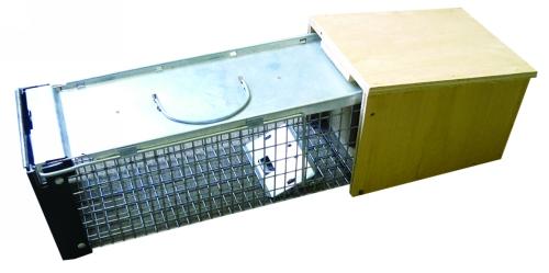 water vole trap