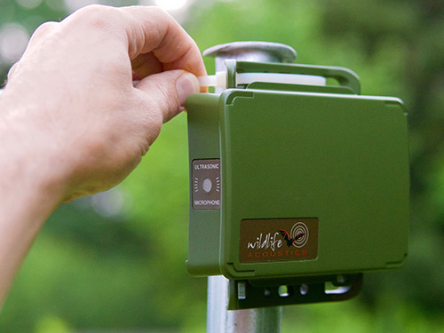 Song Meter Mini